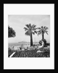 Cruise liner 'Chusan' (1950) at Cannes by Marine Photo Service