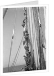Kuwaiti sailors climbing aloft and working on the lateen yard by Alan Villiers