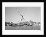 Indian dhows lying at anchor at Mutrah by Alan Villiers