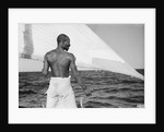 A sailor of the 'Sheikh Mansur' keeps and eye on the sail by Alan Villiers