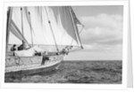The tack of fore-foot of the mainsail with, behind it, a jib set on a spar, on a boom under full sail by Alan Villiers