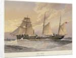 HMS 'Thrush', First class gunboat by W. Fred Mitchell