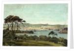 Devonport from Mount Edgcumbe by Phillip Mitchell