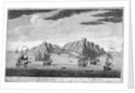 The island of St Helen by Jan van Ryne