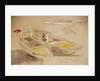 Studies of Venetian craft by Edward Lear