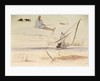 Studies on the Nile by Edward Lear