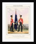 Costume of the Royal Navy & Marines. Royal Marines (Subalterns) 2d. Lt. by L. Mansion