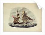 HM Sloop 'Sparrowhawk' by William Smyth