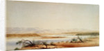 Santa Cruz River and distant view of the Andes, from the 1878 'Beagle' voyage by Conrad Martens