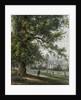 Greenwich Hospital from the park, June 1855 by Thomas Hosmer Shepherd