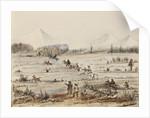 Fox hunting, Magellan Straits by Harry Edmund Edgell