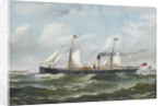 SS 'Gotha' of Goole by Reuben Chappell