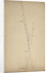 A study of two furled sails by Willem Van de Velde the Younger