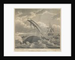 Frontispiece to 'Account of the Arctic Regions' by W Scoresby: Dangers of the Whale Fishery by William Horne Lizars