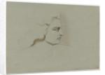 Castor by Margaret Louisa Herschel