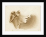 Study of the lower part of a human face, possibly a statue by Margaret Louisa Herschel