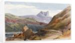 View of an island in Scotland by Margaret Louisa Herschel