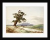 View of a tree near a river with cattle drinking and purple hill beyond by John Frederick William Herschel