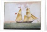 Brig schooner 'Cosmopolitan' of Ipswich by Nicholas Cammillieri