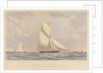 Cutter yacht 'Osprey' (1859) 59 tons by Josiah Taylor