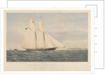 Schooner Yacht Aline,  216 Tons... Royal Victoria Yacht Club by Thomas Goldsworth Dutton