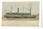 The steam vessel 'Ramona' by unknown