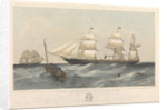 Steamship 'Vittorio Emanuele' ad elice di Bandiera Sarda by Thomas Goldsworth Dutton