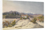Callina [Colina], 15 miles north of Santiago, Jany 13th 1851 [Chile] by Edward Gennys Fanshawe