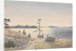 Coastal view four miles north-eastward of Reskar Lighthouse, Baro Sound, Finland by Edward Gennys Fanshawe