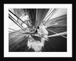 Morgenster in flight, Morgenster VOF by Richard Sibley