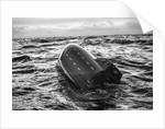We spotted a Free Fall Lifeboat by Richard Sibley