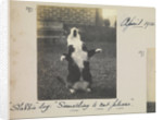 """'""""Slabbie"""" log: """"Something to eat please"""". April 1914'. From an album relating to the career of Lt. Cdr. Herbert Allen Slade, RN, 1908-1918 by Lt. Cdr. Herbert Allen Slade"""