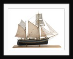 Model of East coast Billyboy 'Blue Jacket' Built in 1860. Starboard broadside by Alistair Brown
