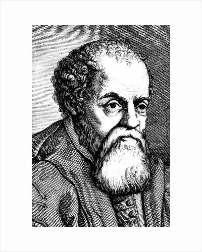 Ulysses Aldrovandi, 16th century Italian naturalist, 18th century by Unknown