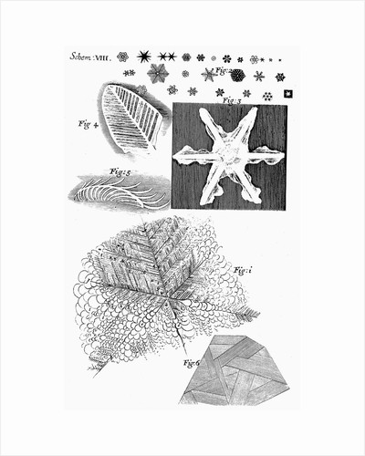 Frozen materials viewed by English microscopist Robert Hooke, 1665 by Unknown