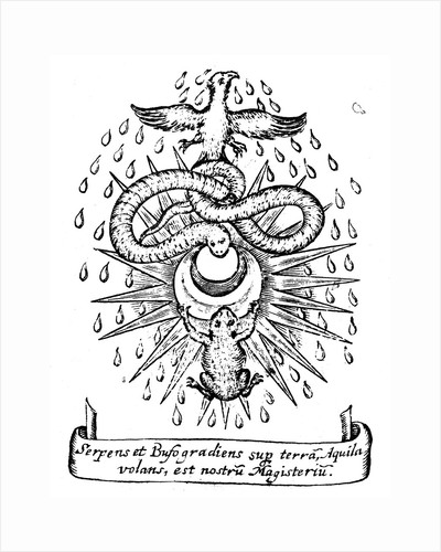 Alchemical symbolism, 1652 by Unknown