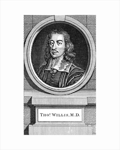 Thomas Willis, 17th century English physician, 1742 by George Vertue