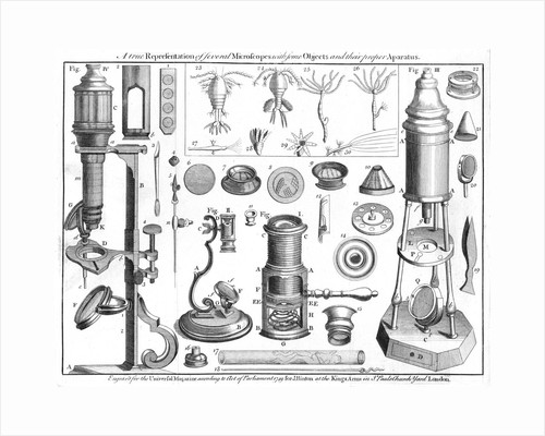 Microscopes and microscopical objects, 1750 by Unknown