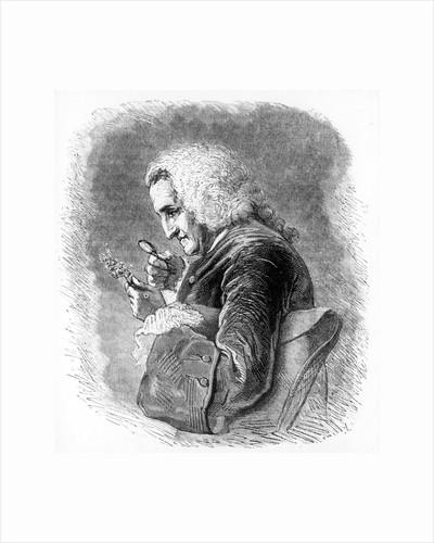 Bernard de Jussieu, 18th century French botanist, 1880 by Unknown