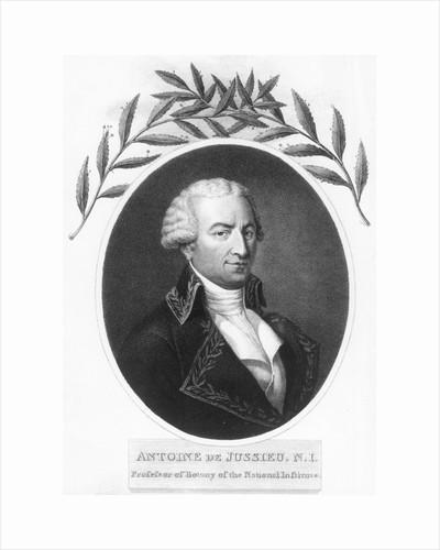 Antoine de Jussieu, 18th century French botanist, 1807 by Unknown
