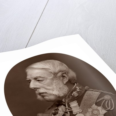 Sir Richard Airey by Lock & Whitfield