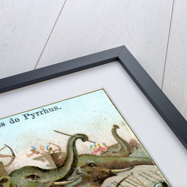 The Elephants of Pyrrhus by Anonymous