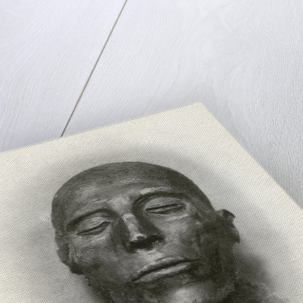 Head of the mummy of Sety I, Ancient Egyptian pharaoh of the 19th Dynasty by Winifred Mabel Brunton