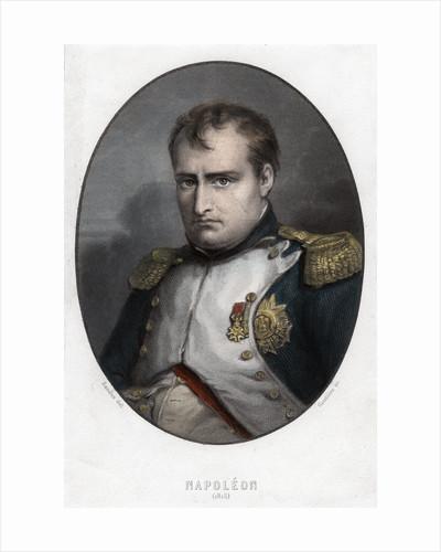 Napoleon Bonaparte by Goutiere