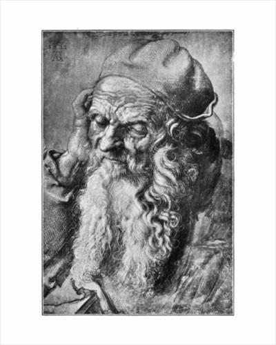 Head of Old Man by Albrecht Dürer