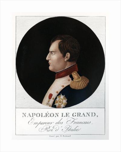 Emperor Napoleon Bonaparte by N Bertrand
