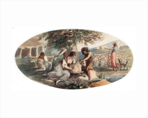Sheep Shearing by William Hamilton