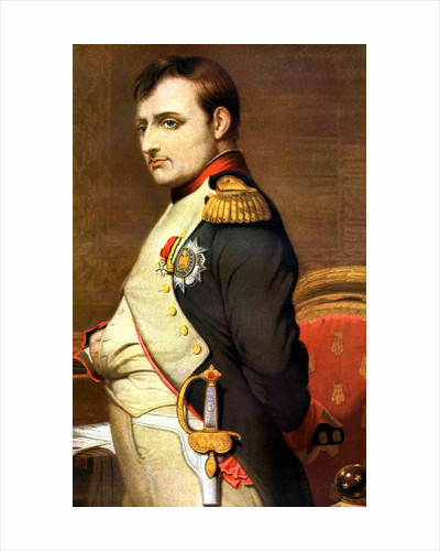 napoleon i emperor of the french essay Get started researching the french revolution and napoleon find books   volume 3 contains primary source documents volumes 1-2 contain topical  essays.