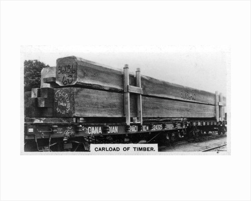 Carload of Douglas fir, Canada by Anonymous