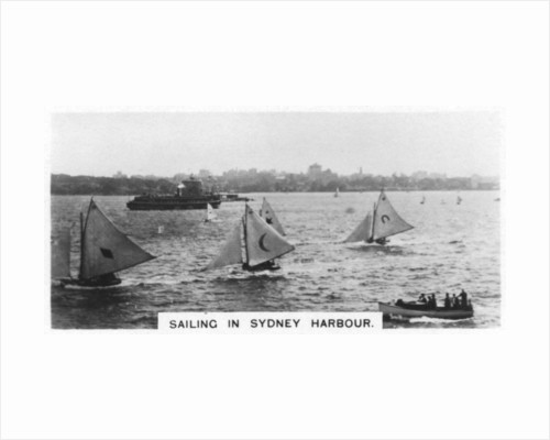 Sailing in Sydney Harbour, Australia by Anonymous